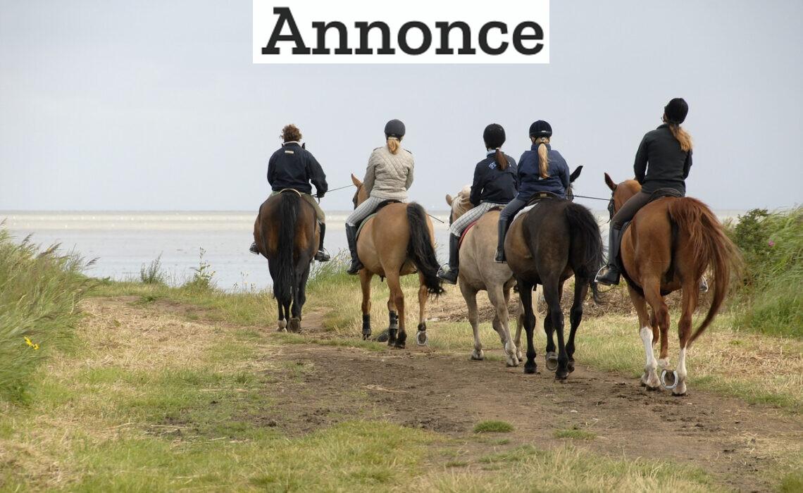 Guide: Ferie på hesteryg