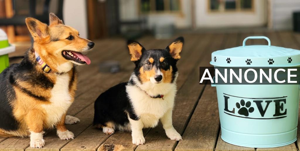 Foderspande – den optimale opbevaringsløsning til hundefoder
