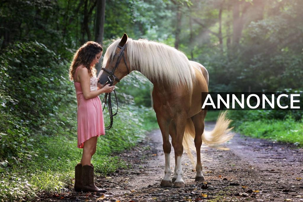 Hvordan passer du bedst på din hest?