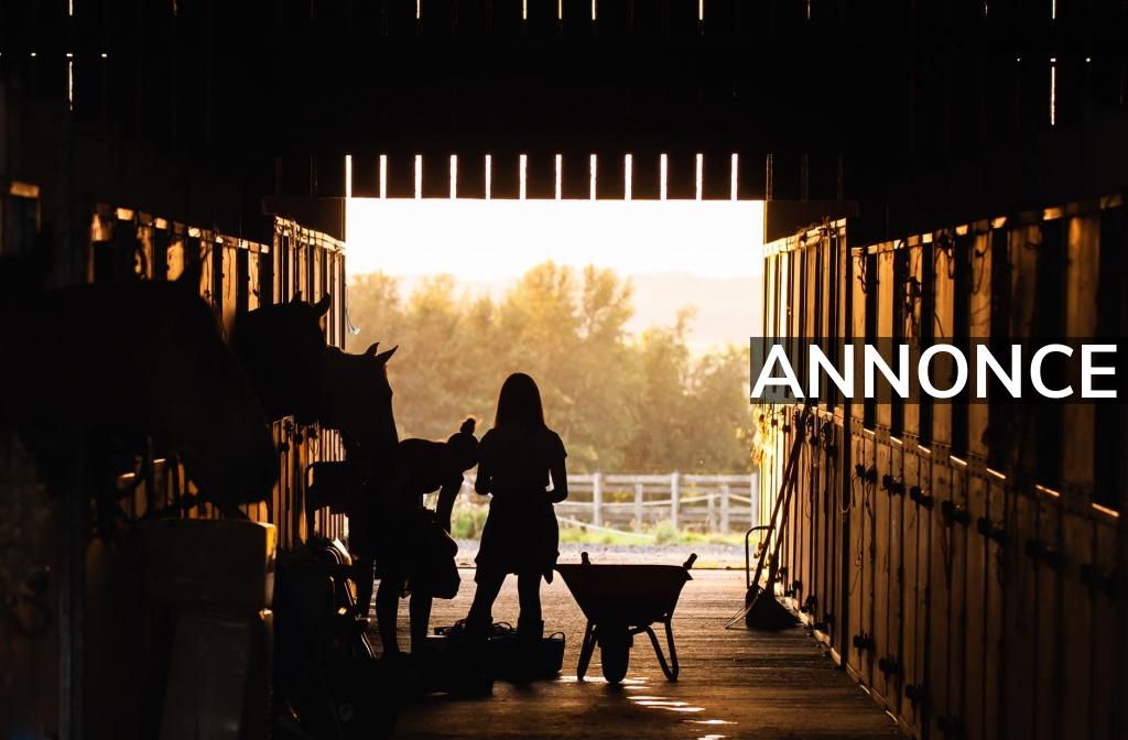 Få en god belægning ude ved din hest